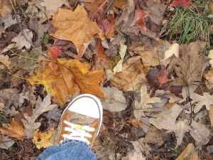 Leaves and my sneaker