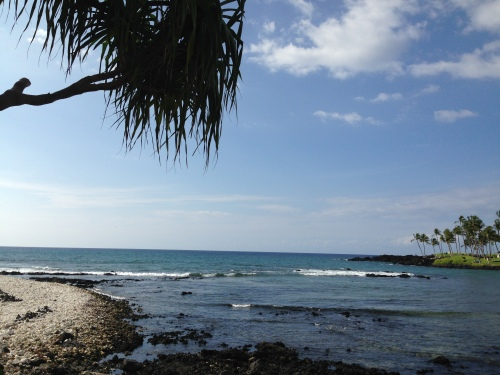 Island State of Mind: Kohala Coast