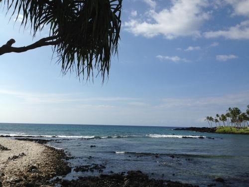 Island State of Mind: Kohala Coast